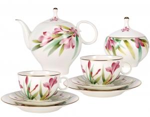 Lomonosov Imperial Porcelain Bone China Tea Set 20pc Dome Aquarelle
