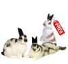 Easter Special: Buy 2 Bunny Rabbits and Get One for Free Lomonosov Porcelain
