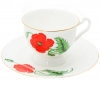 "Lomonosov Imperial Porcelain Bone China Cup and Saucer ""Cardinal"""