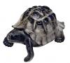 Turtle Figurine Dark Lomonosov Imperial Porcelain