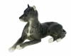 Great Dane Dog Black Colored Lomonosov Figurine