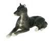 Great Dane Dog Black Colored Lomonosov Figurine