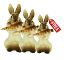 Easter Special: Buy Two Bunny Rabbits with Carrot and Get One for Free